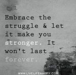 embrace-the-struggle